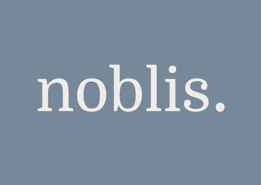 NOBLIS MAIN LOGO3.jpg