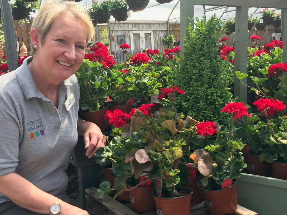 - Hi, I'm Fiona. I've been the centre manager at Bushmills Garden Centre for over 20 years. I love my job and especially like helping customers… it's very rewarding. My favourite plant is red geranium — they're so pretty and easy to look after.