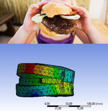 Image 2. The joint of the exoskeleton bends the same way as a hamburger that is squeezed on one side.