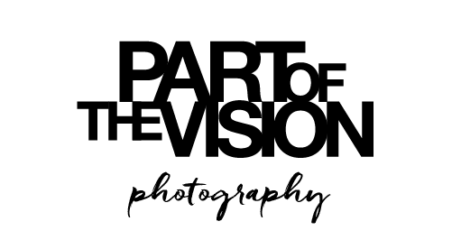 PART OF THE VISION