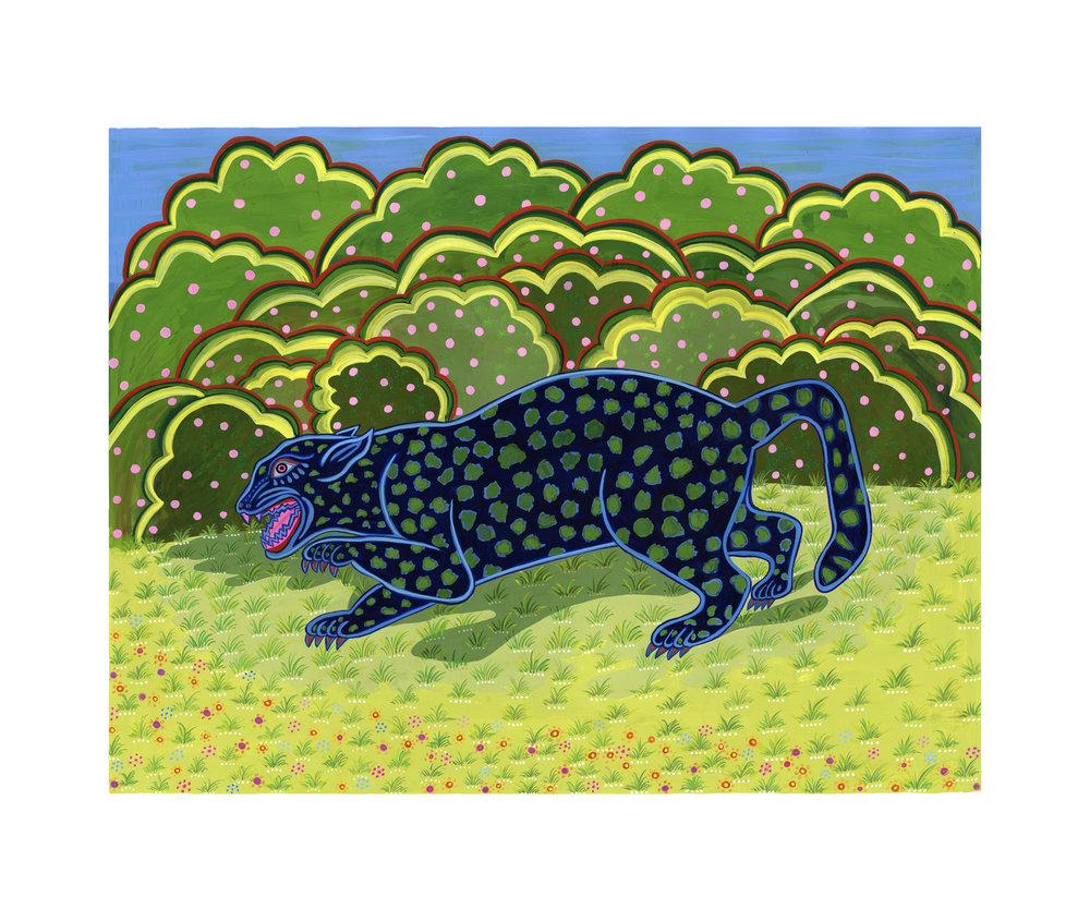 Beyond Audubon, Jaguar