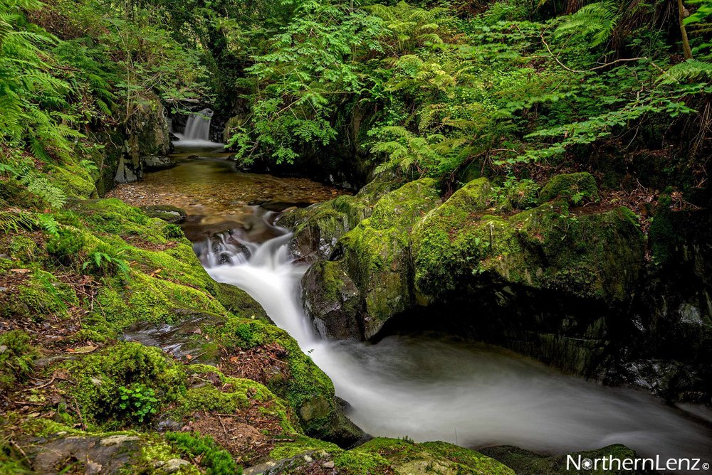 Little gem of a river en route to Crummock Water, Cumbria  Image Ref: WW04