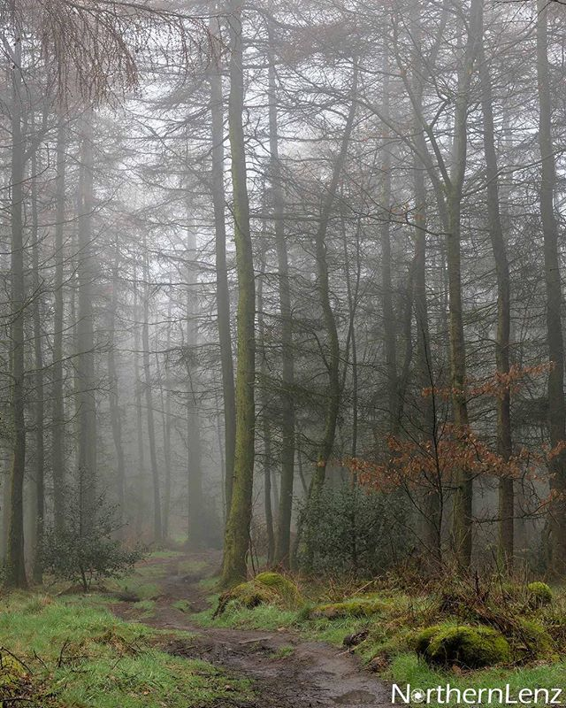Venturing into mist at Healey Nab, Chorley