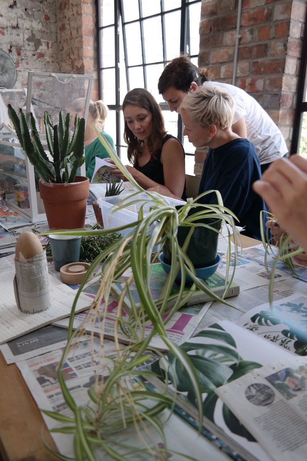 What you sow plant propagation workshop