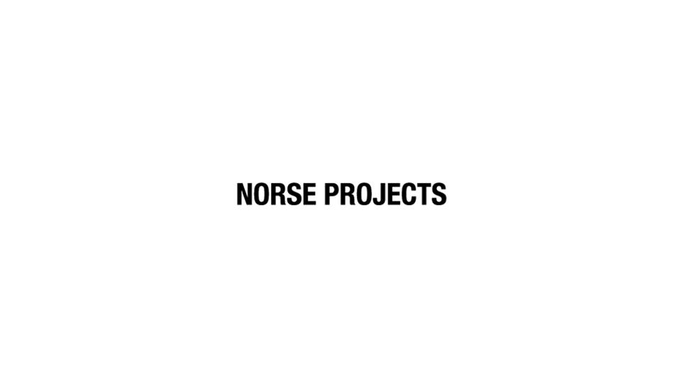 Norseprojectsportal.png