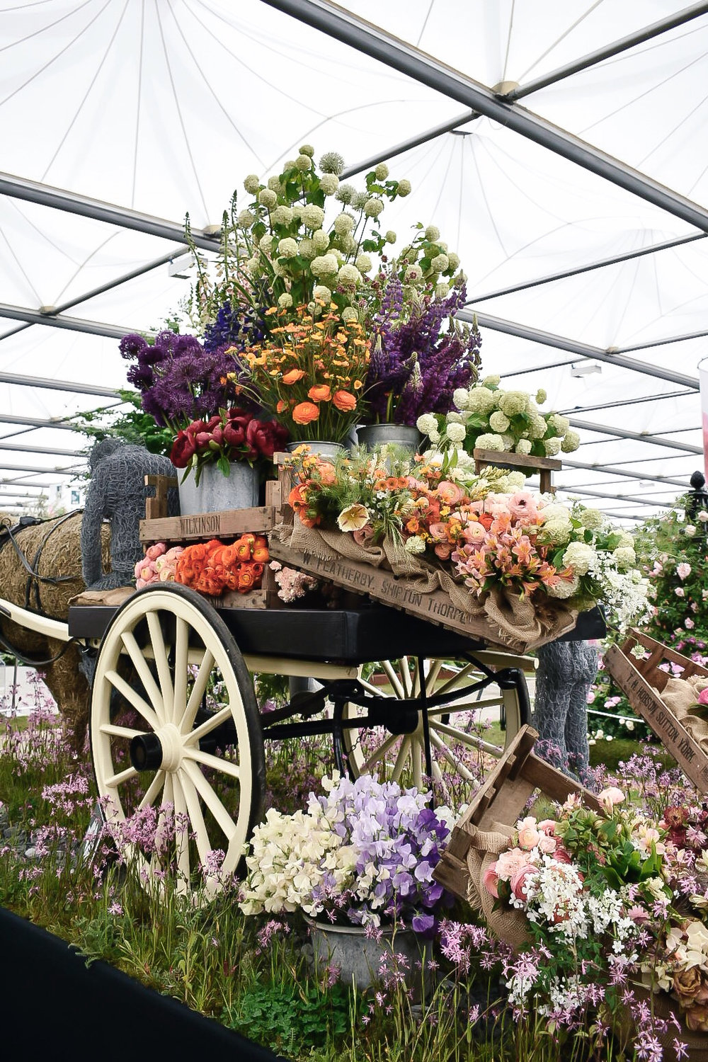 Under The Floral Spell At The Rhs Chelsea Flower Show Skye Oneill