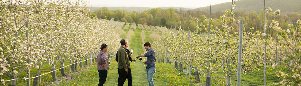 Enjoying the fruits of their labor. L to R: Josh Morgenthau of Fishkill Farms, Sara Grady of Glynwood, Ryan Burk of Angry Orchard, Megan Larmer of Glynwood.