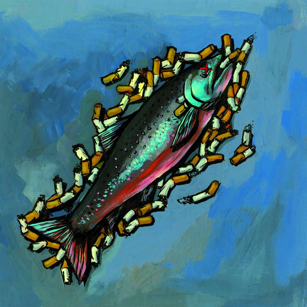 fish_highres.jpg