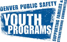 DPS Safety logo.png