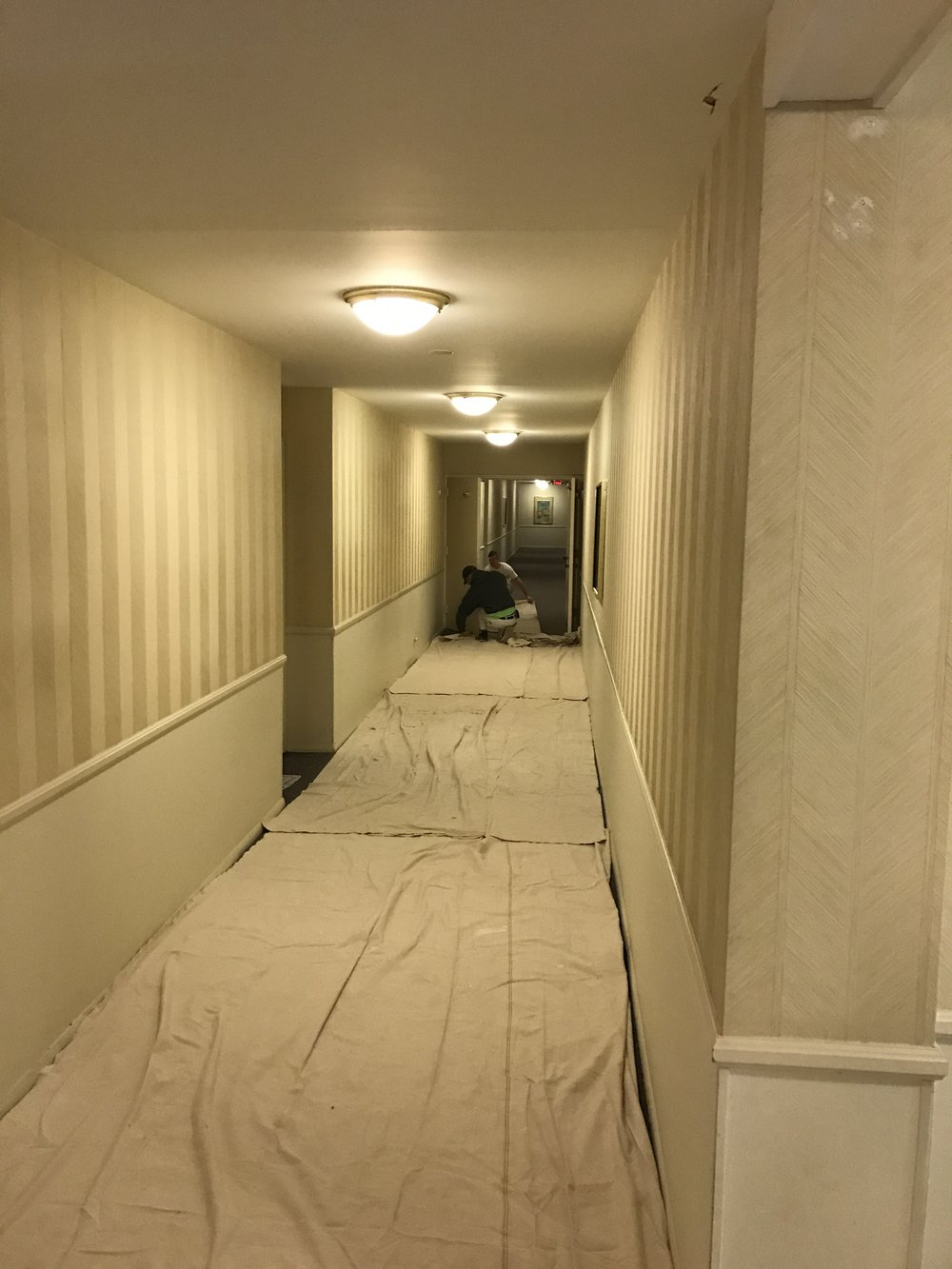 painters-inc-chicago-best-commercial-painters-hoa-59.JPG