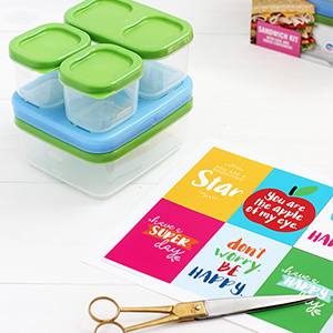 Back-To-School Healthy Lunch Ideas with Free Printable, Alice and Lois
