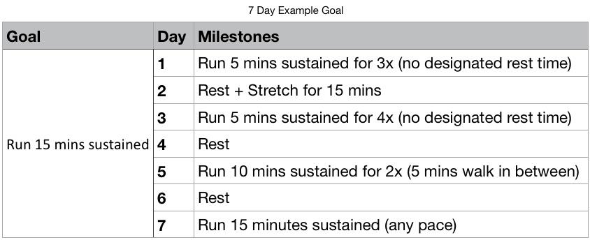7 day goal excel.jpg