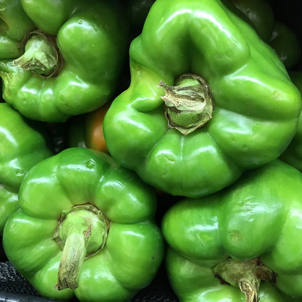 Aug 17 Local Green Bell Peppers 2.jpg