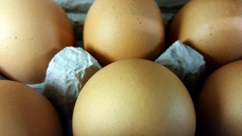 Wholesome Harvest Brown Eggs.jpg