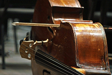 Bass & Cello
