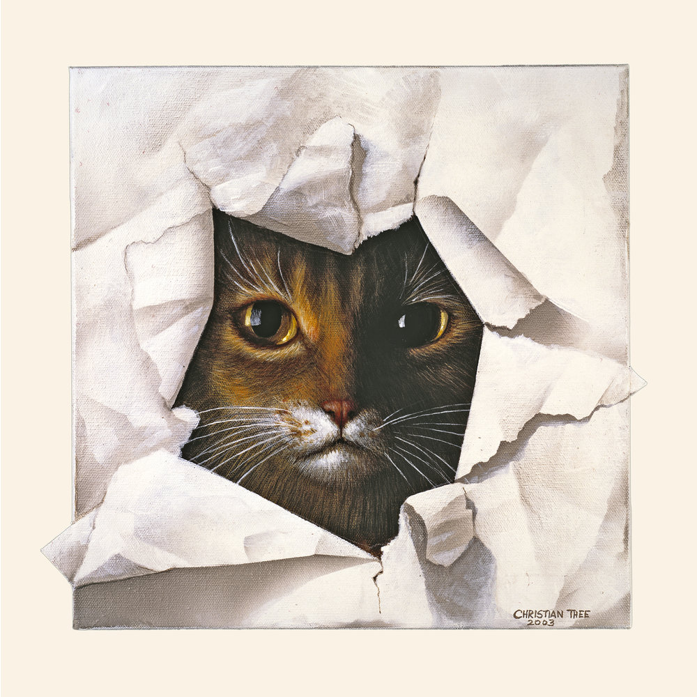 "Cat in Paper, Acrylic on Canvas, 12"" x 12"""