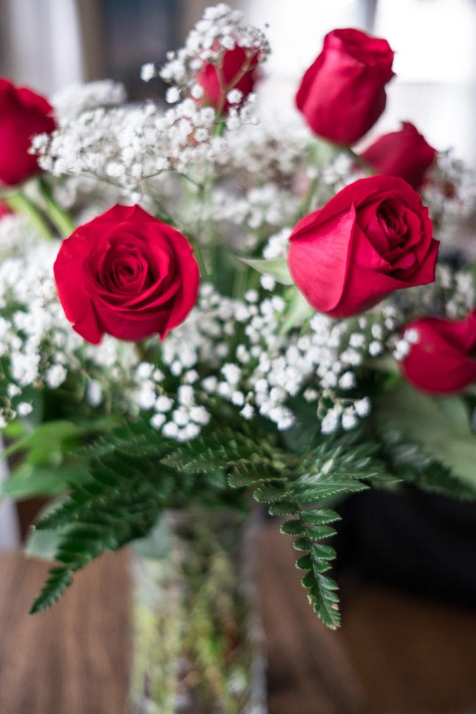 Roses_DSCF1514_20170216_10-683x1024.jpg