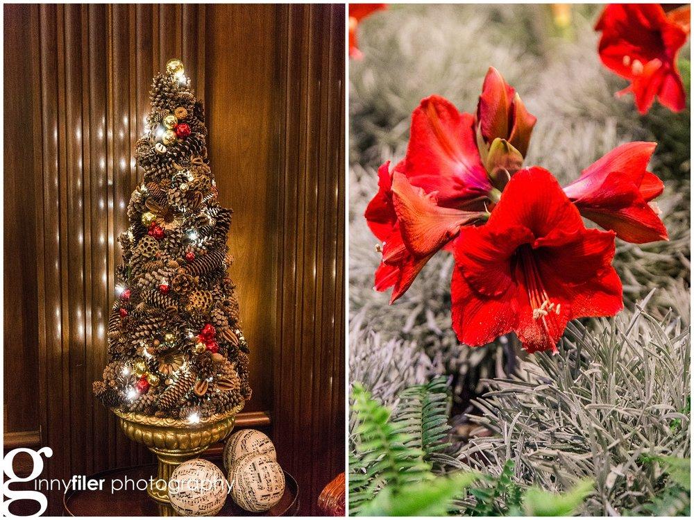 longwood_Christmas_0014.jpg