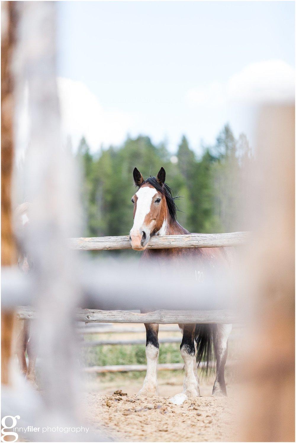 ranch_west_0006.jpg