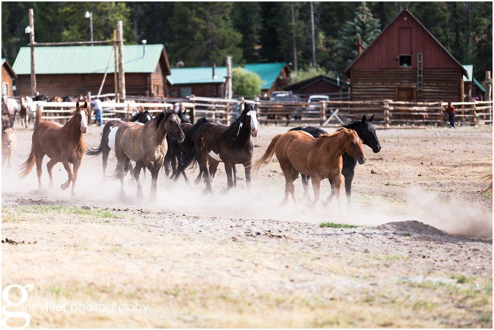 ranch_west_0010.jpg