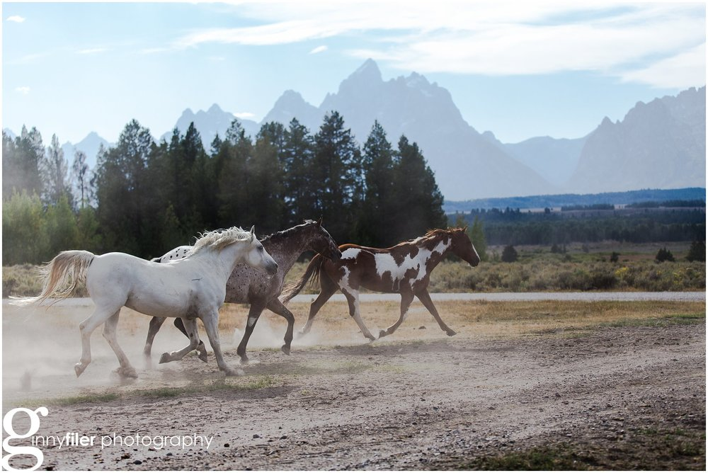 ranch_west_0012.jpg