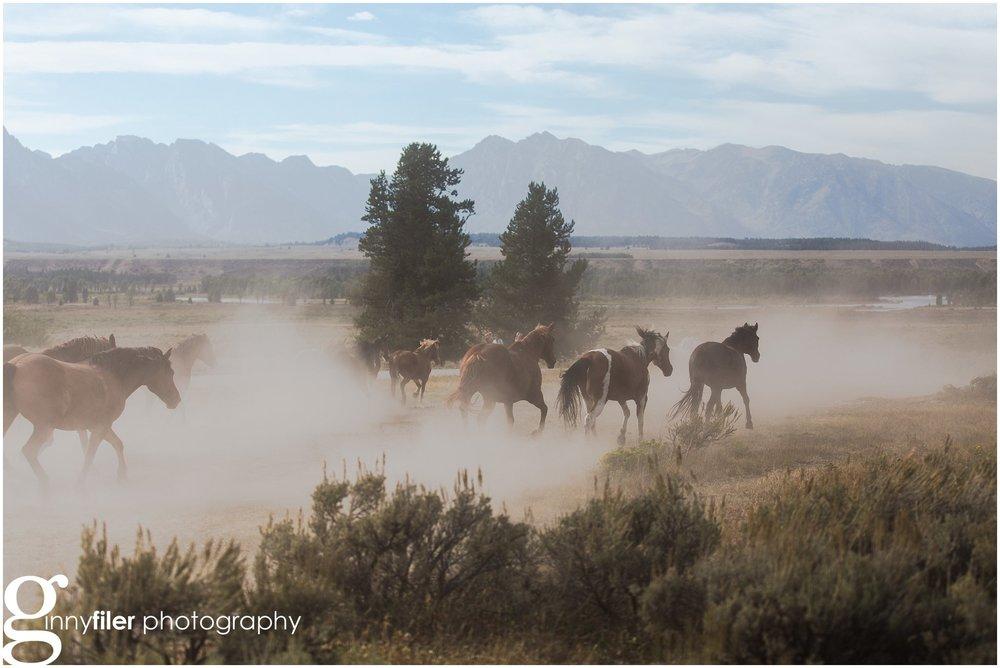 ranch_west_0014.jpg