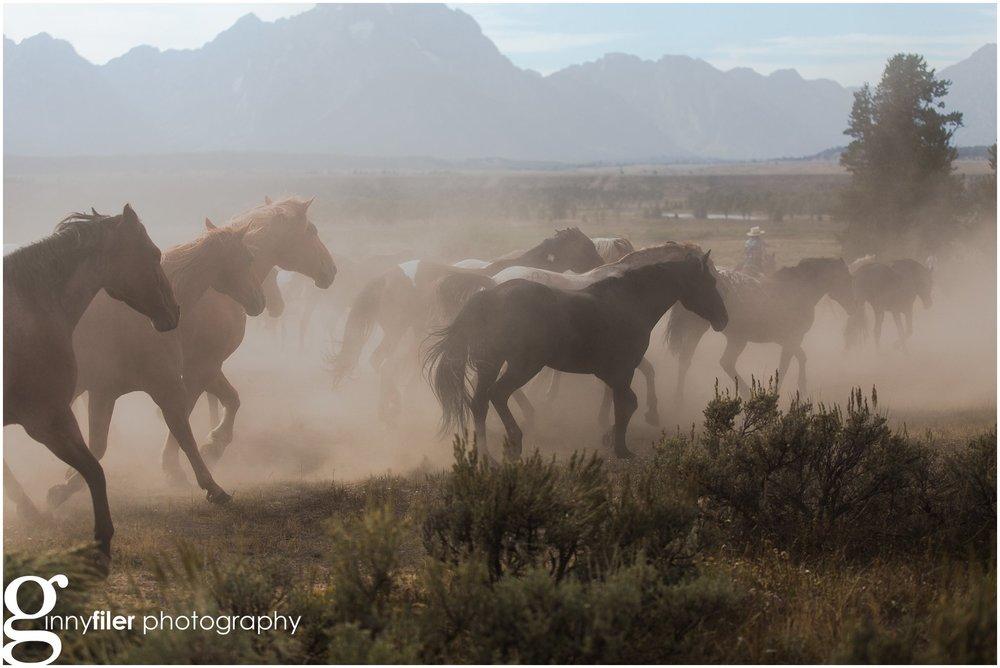 ranch_west_0016.jpg