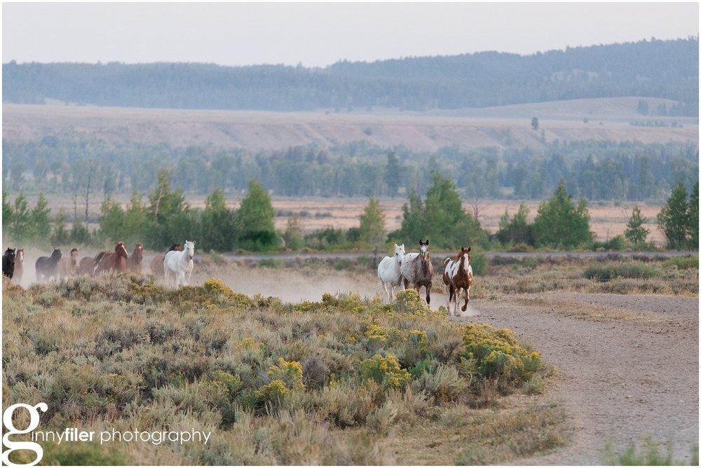 ranch_west_0024.jpg