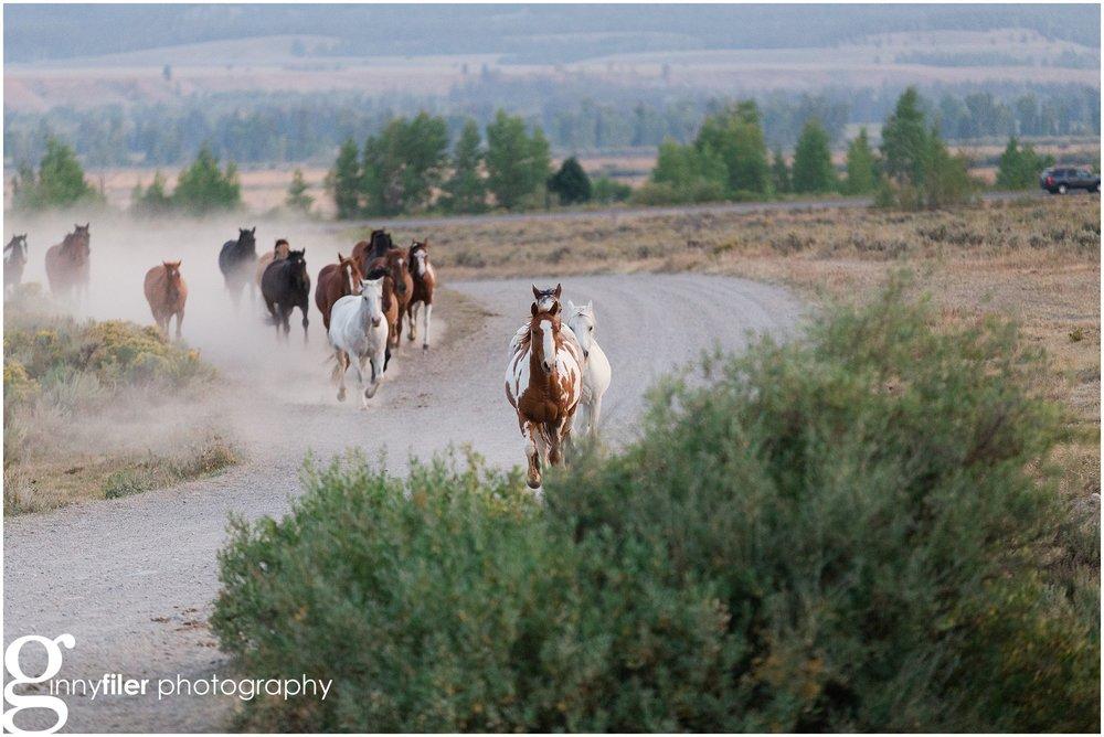 ranch_west_0025.jpg