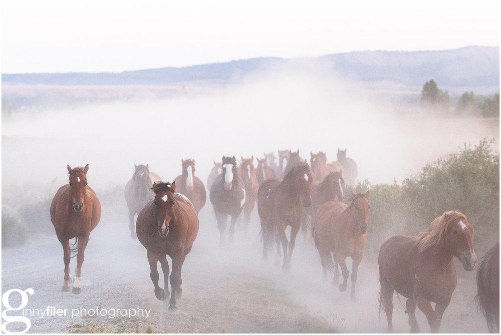ranch_west_0029.jpg