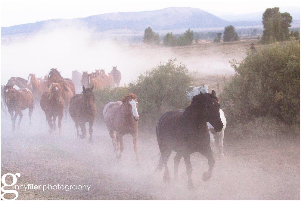 ranch_west_0028.jpg