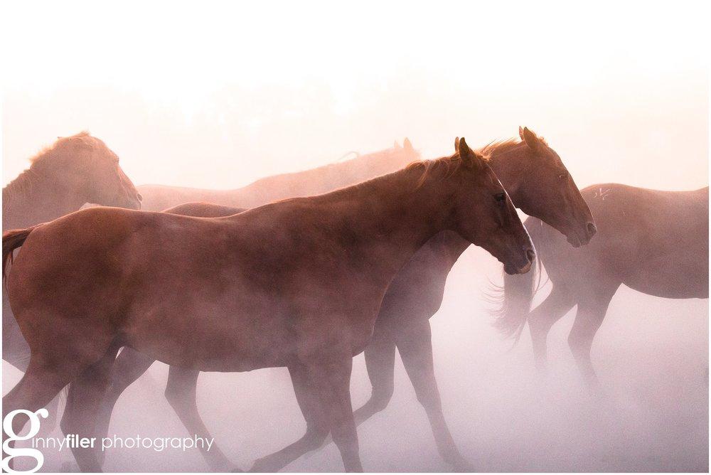 ranch_west_0030.jpg