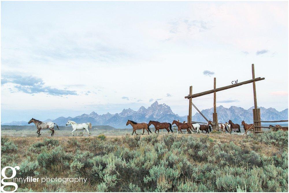 ranch_west_0064.jpg