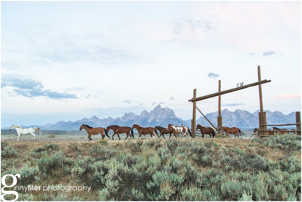 ranch_west_0065.jpg