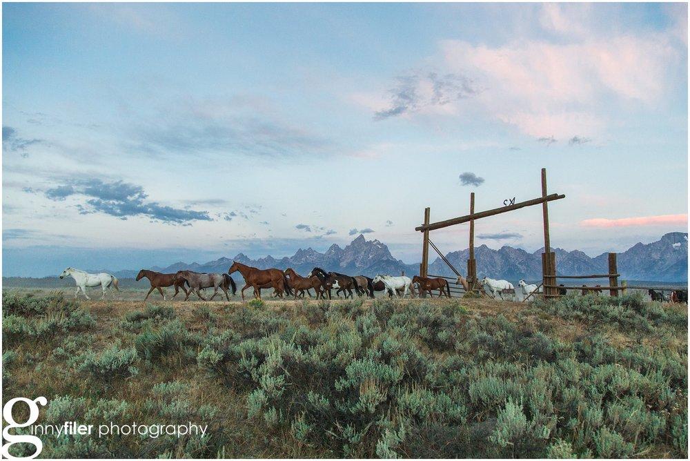 ranch_west_0067.jpg