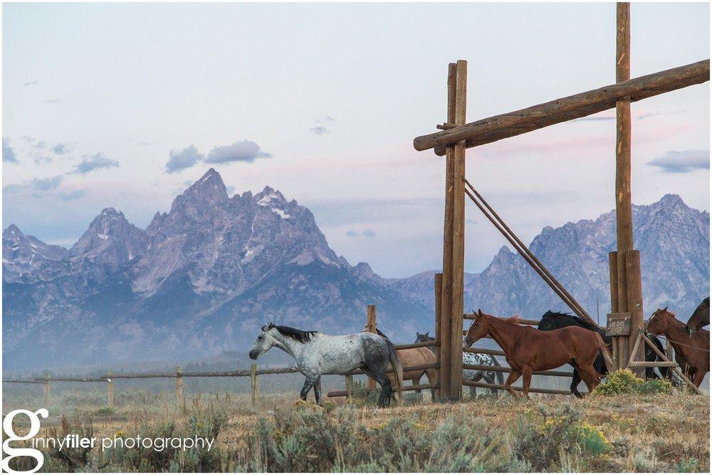 ranch_west_0068.jpg