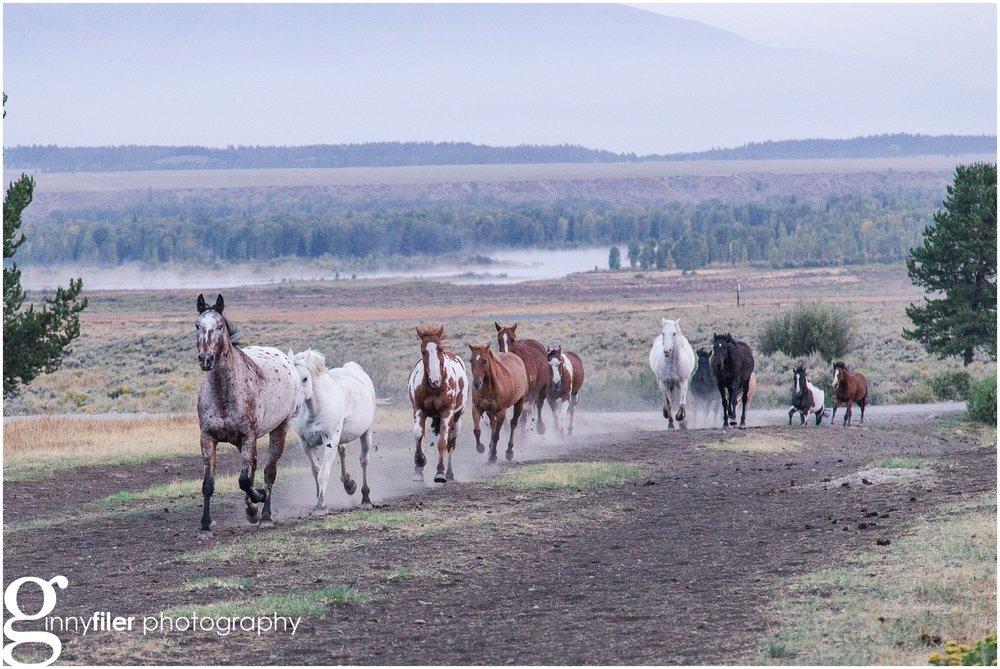ranch_west_0087.jpg