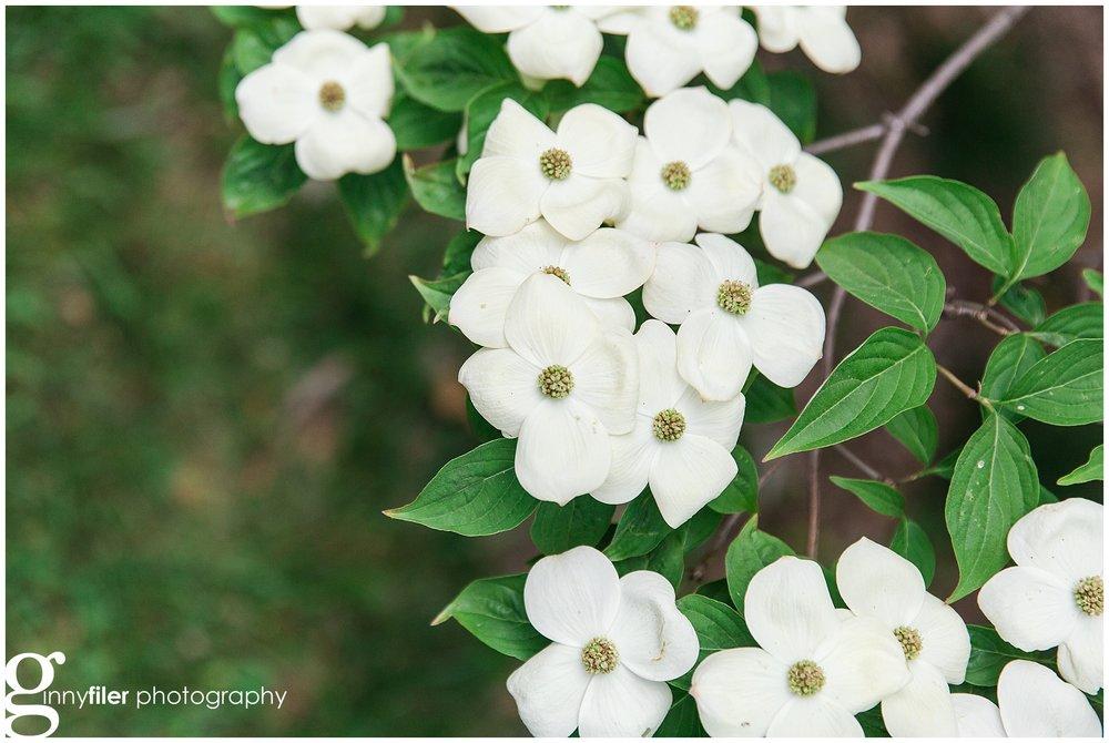 spring_flowers_april_0154.jpg