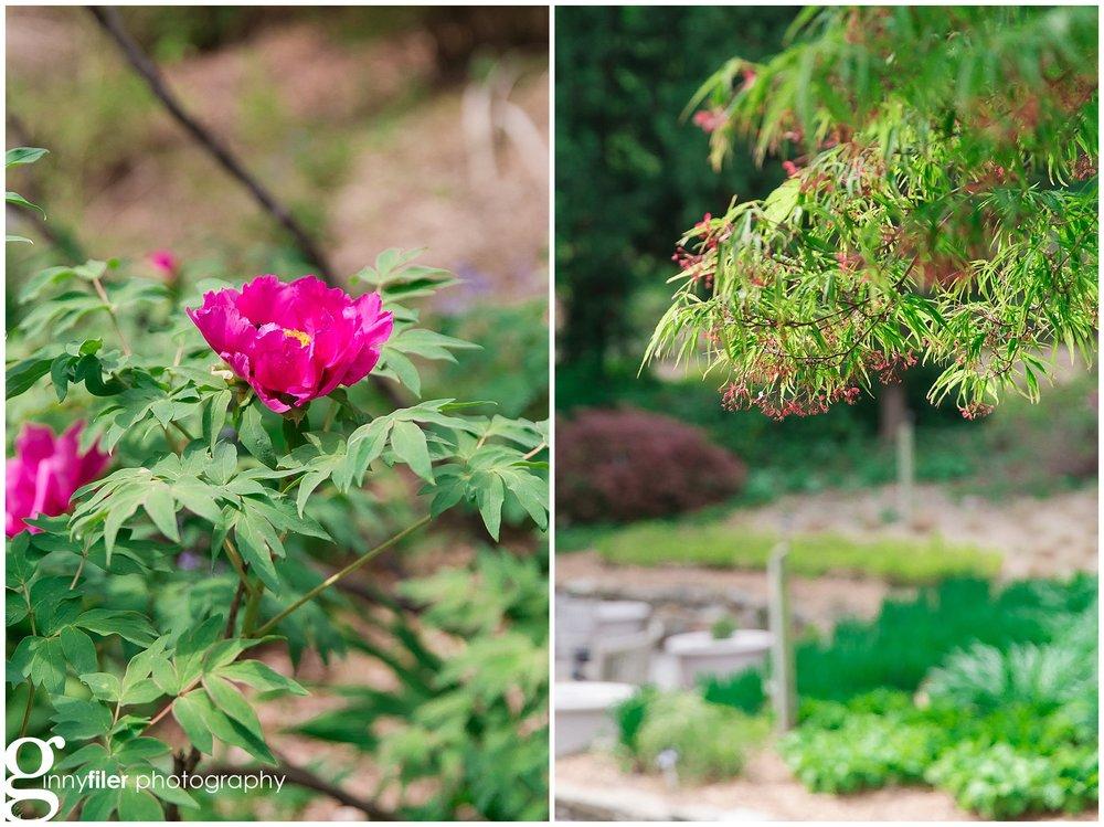 spring_flowers_april_0155.jpg