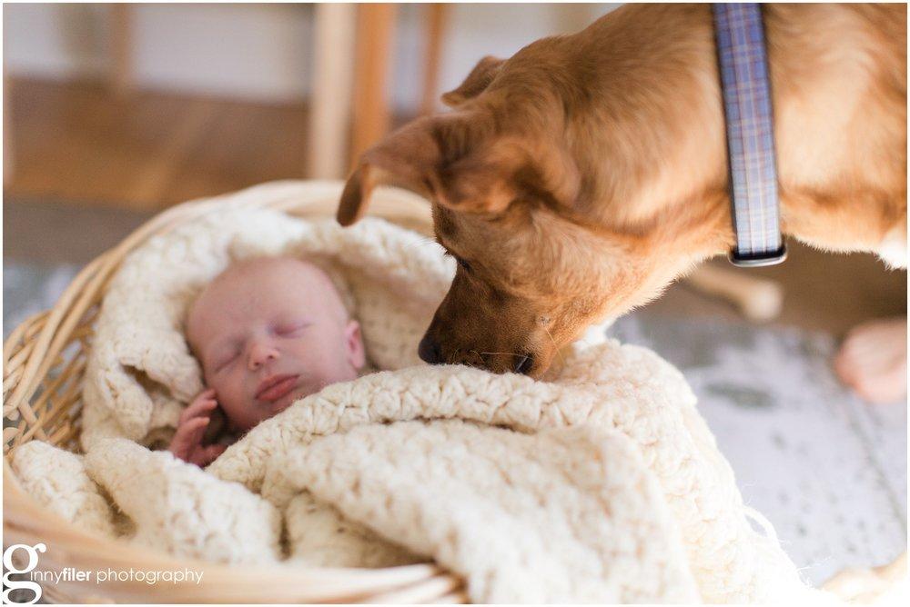 newborn_baby_boy_0155.jpg