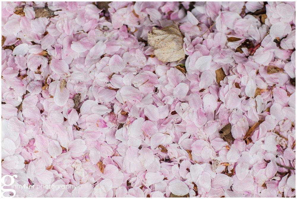 spring_flowers_0070.jpg