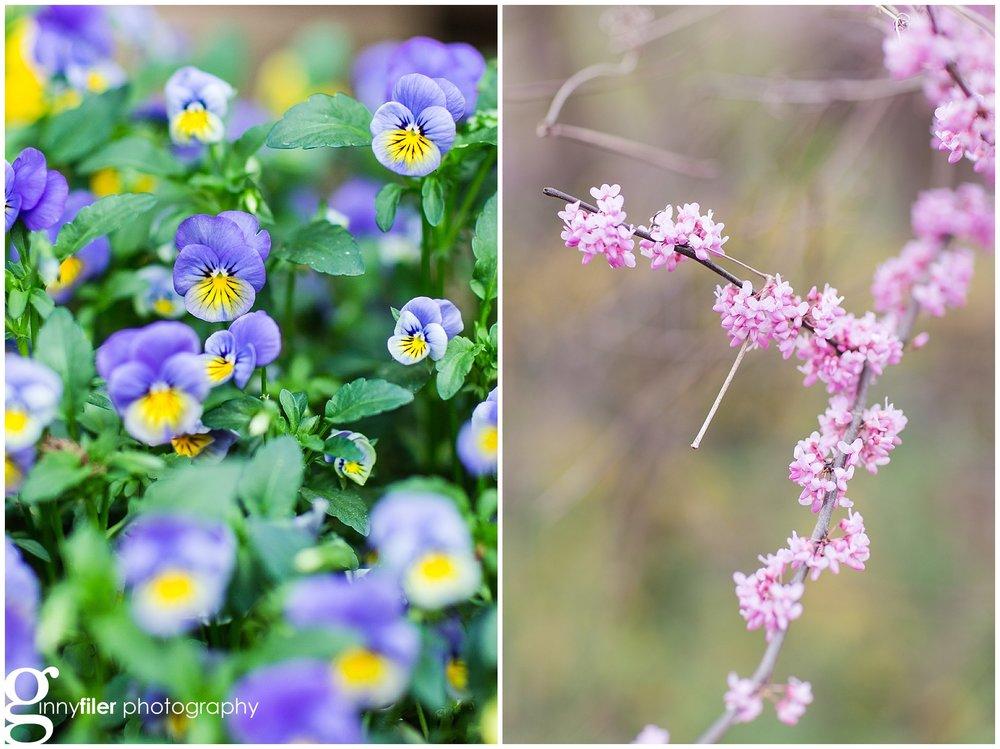 spring_flowers_0071.jpg
