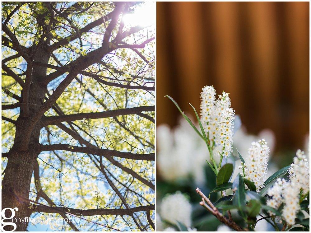 spring_flowers_april_0138.jpg