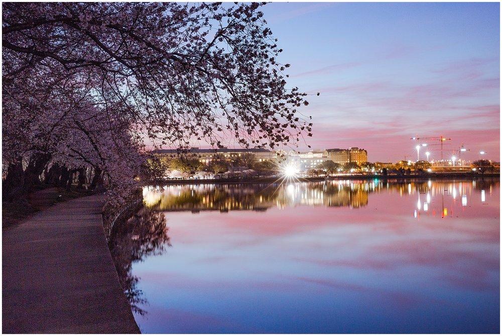 cherryblossom_washingtondc_spring_pink_0012.jpg