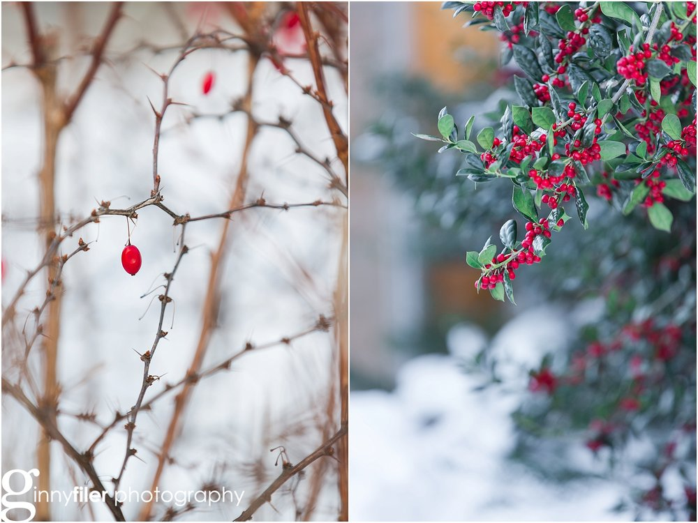 snow__VGF_2976_0019.jpg