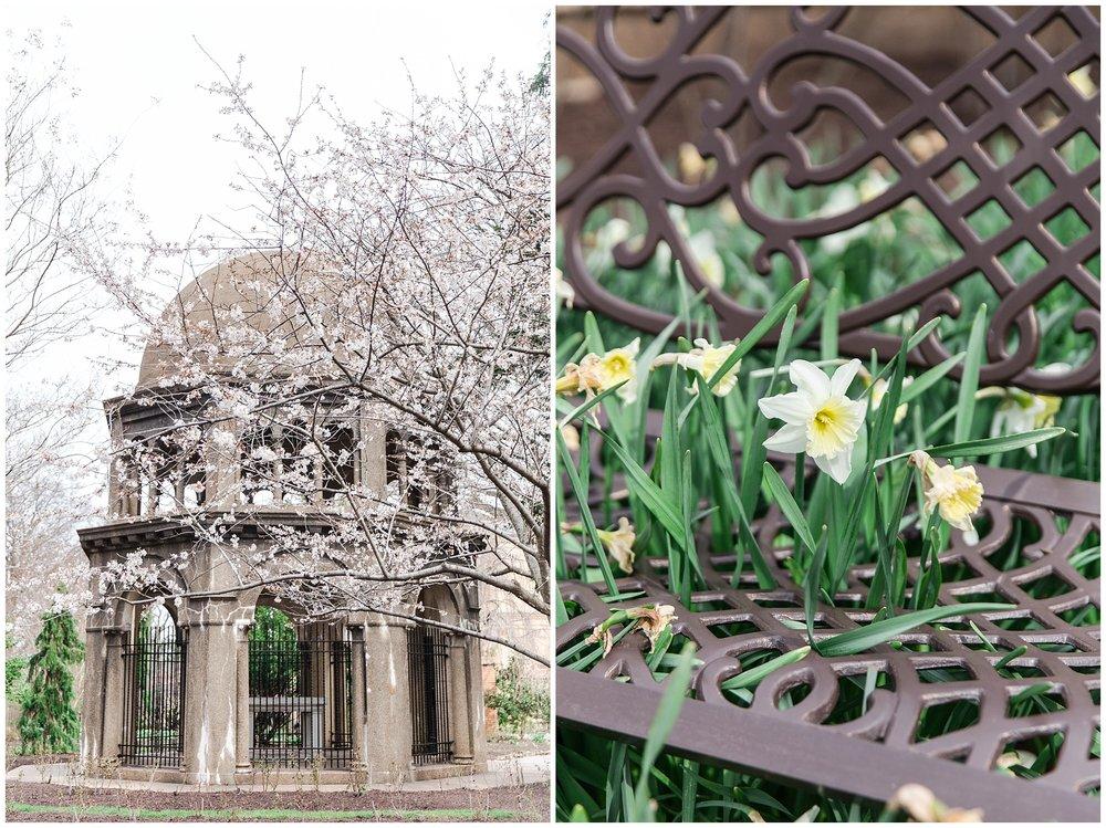 Washington DC Spring_0010.jpg