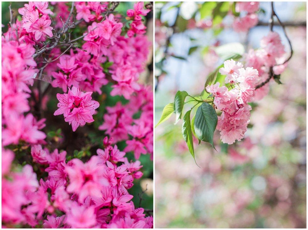 spring_flowers_April_0015.jpg