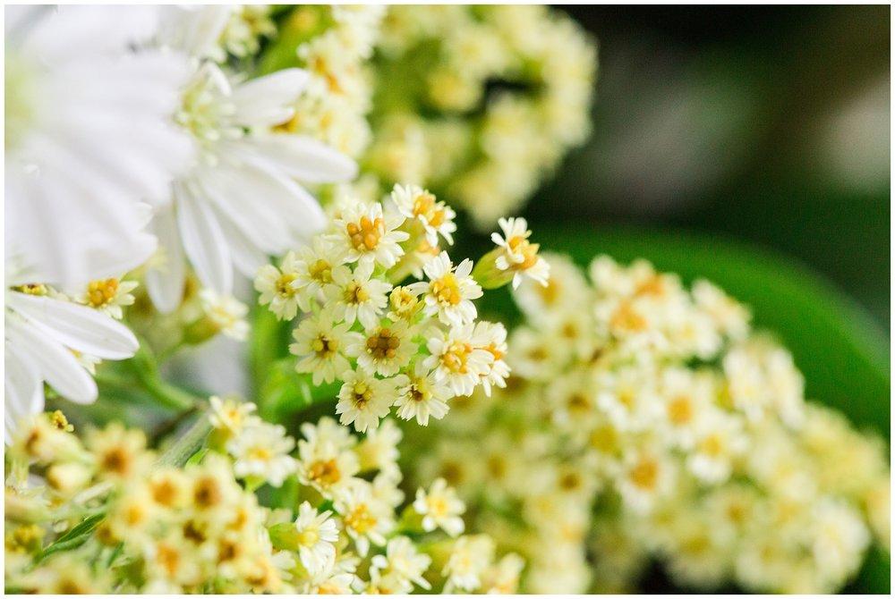spring_flowers_April_0034.jpg
