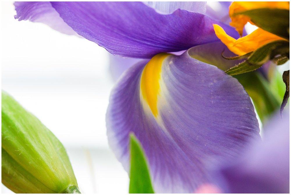 spring_flowers_April_0037.jpg