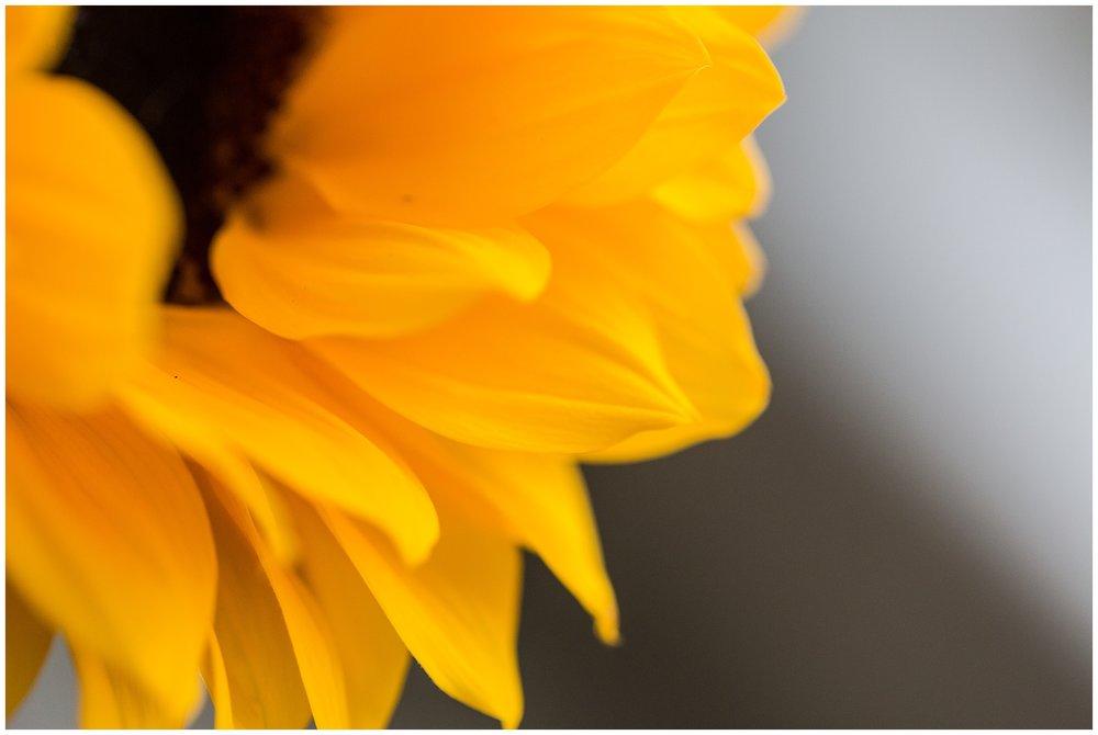 spring_flowers_April_0044.jpg